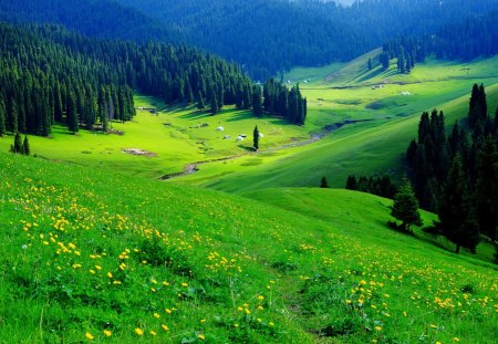 Mountain Greenery Mountains Nature Background Wallpapers