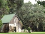Spanish Moss by old barn