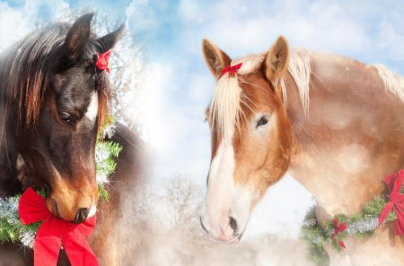 Christmas Horses - tinsels, feliz navidad, christmas, fir, ranch, farm, sweet, horses, winter, ribbons, spruce