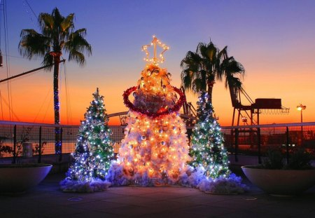 Festive Christmas Lights - holidays, festive, christmas, sunsets, trees, lights