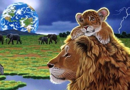 lion - hrdave, matu, omdave, amit