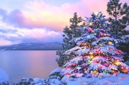 39 splendid of christmas tree 39 winter nature background - Christmas nature wallpaper ...