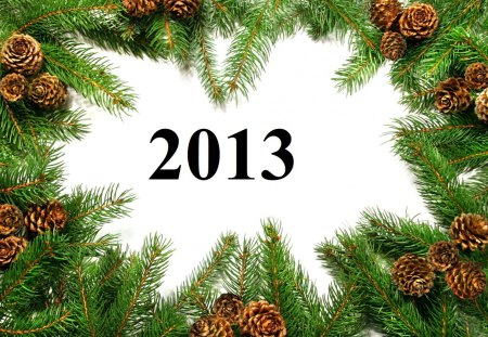 Happy New Year - 2013, cone, holidays, pine tree-branch, white space, happy new year
