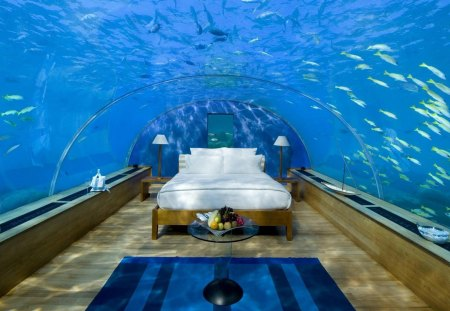 Absolutely The Best Bedroom In The World