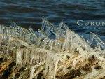 Curonia colors - Ice age