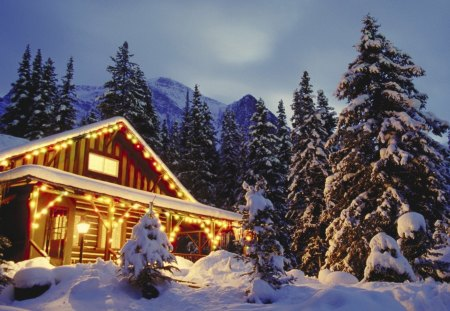 Christmas In The Woods.Christmas In The Woods Houses Architecture Background