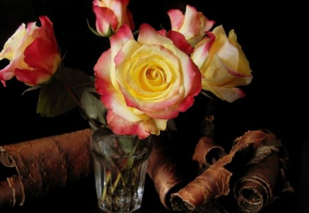 Roses - glass, package, roses, bark