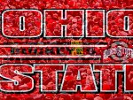 OHIO STATE BUCKEYES 12-0 THE URBAN ERA