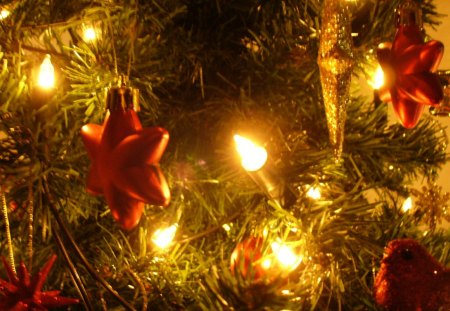 Lights in the Christmas tree - tree, little, christmas, decoration, lights
