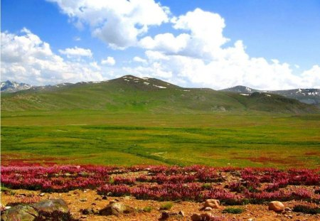 Deosai - world, mountain, deosai, nature
