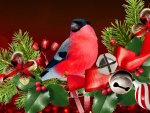 Christmas Bird Celebration