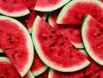 Slices Of Watermelon