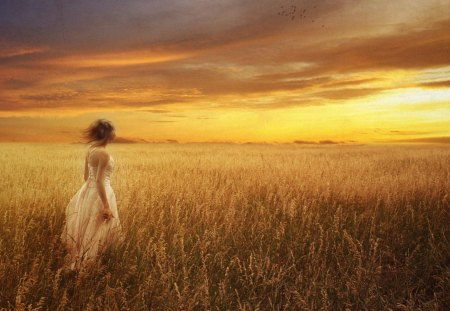 Maiden in the Light of Dawn - dawn, grass, sunrise, sunset, sky, lady, woman