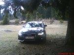 Audi A4 under a tree