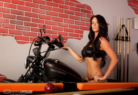 Alicia Harley Davidson Amp Motorcycles Background