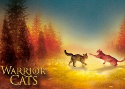 Warrior Cats! , Cats \u0026 Animals Background Wallpapers on