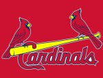 St Louis Cardinals 2 Birds on Bat