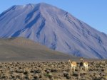 el misti, stratovolcano, peru, volcano