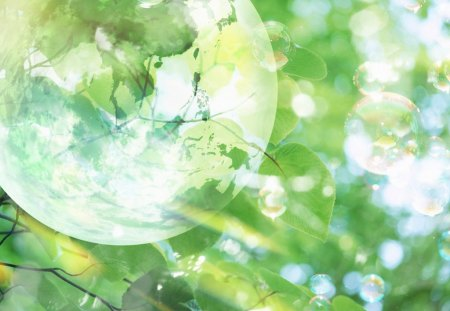 Transparent Globe, green leaves and sunlight - leaves, sunlight, green, globe, nature
