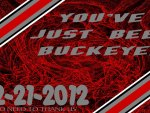 YOU'VE JUST BEEN BUCKEYED 12-21-2012