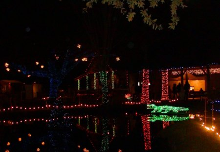 christmas on the bayou bayou christmas cajun christmas lights christmas lights - Christmas In The Bayou