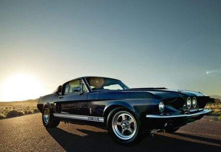 Ford Mustang Shelby GT 500 - gt, desert, muscle, american, mustang, 500, ford, car, shelby, sunrise