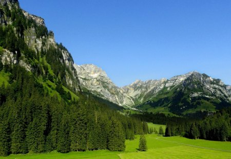 engelberg - cool, trees, mountain, nature
