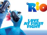 Rio Love At First Fight