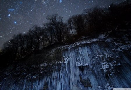 stars above an iced cliff - stars, cliff, icicles, trees, night
