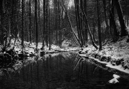 Winter - forest, water, snow, river, trees, winter, cold