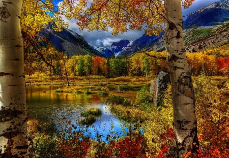 Autumn Scene Lakes Nature Background Wallpapers On