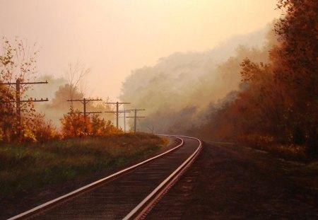 Autumn and the railroad - railroad, autumn, tree, sun