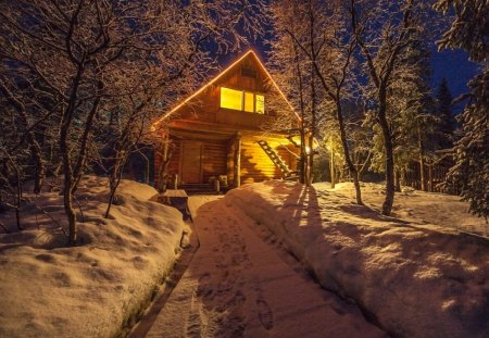 Winter - forest, nature, house, winter
