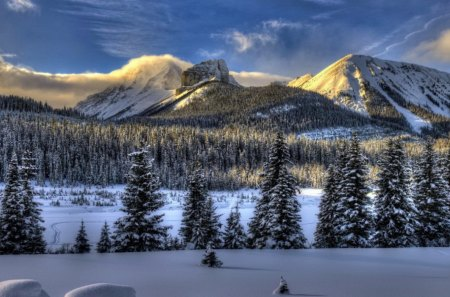 Winter mountain - pretty, glow, lovely, beautiful, trees, sky, winter, cold, nice, snow, ice, peaks, nature, frozen, frost