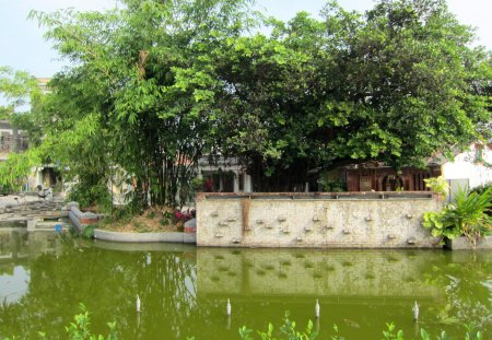 The pond in front of  the Historic House - Historic House, countryside, pond, tree