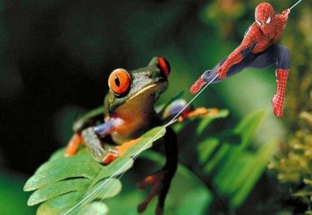 V Frog Download Spiderman vs Frog