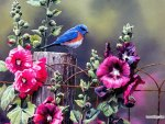 ✰Blue birds with colorful flowers✰