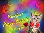 ♥ ~ღ.Purrfect Happy Birthday.ღ~  ♥