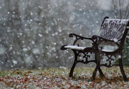 Snowy bench - pretty, rest, lovely, relax, bench, beautiful, park, snowy, winter, cold, snowflakews, nice, snow, walk