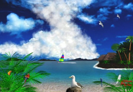 Tropical Wonder - Birds, Tropics, Beaches, Sailing, Oceans, Parrots, Water, Tropical