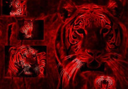 Red Tiger family - 3D and CG & Abstract Background ...