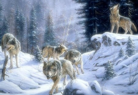 ✰Wolves Signals✰ - sun, signals, Seasons, breeze, shine, beautiful, howl, Winter, canine, lights, Nature, Wolves Signals, frosty, splendor, wild, Painting, forests, magnificent, animals, white trees, Art, hunters, trees, adventure, seeking, snow, rays of light, wolves, frozen, looking for, dogs