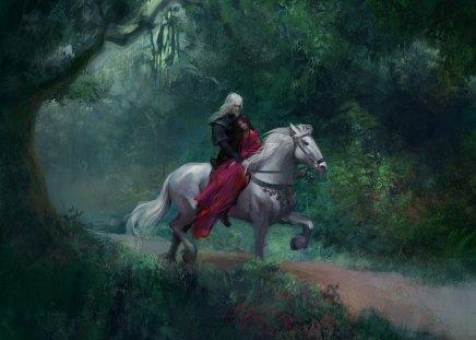 Forest Rider - forest, fantasy, white horse, rider, ride, horse