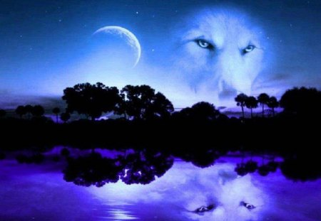 Wolf Blue Moon Fantasy Abstract Background Wallpapers On Desktop Nexus Image 1312681