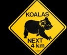 ♥    Koalas Road Sign   ♥