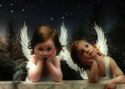 Little Angels - stars, Two angels, angel, angels, sweet, cute, tree, bird, feather, heaven, nature, child, white, night
