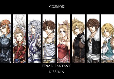 Warriors of Cosmos - warrior of light, tina branford, games, bartz klauser, video games, luneth, bartz, tidus, onion knight, squall leonheart, cloud, cecil, zidane tribal, squall, zidane, final fantasy dissidia, cecil harvey, cloud strife, firion, terra, black background, dissidia, terra branford