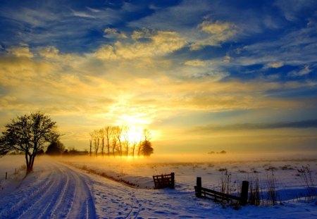 January sunrise - Sunsets & Nature Background Wallpapers on Desktop Nexus (Image 1316311)