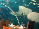 Underwater Dining Room at Conrad Rangali Maldives
