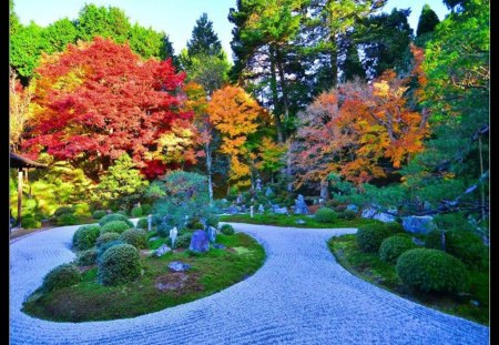 Beautiful Park - Flowers & Nature Background Wallpapers on ...